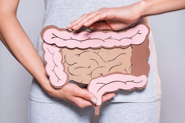 Archivo - Colon, cáncer de colon, intestino
