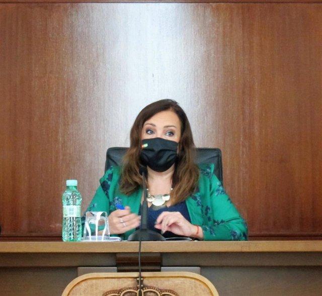 Archivo - La subdelegada del Gobierno en Jaén, Catalina Madueño.
