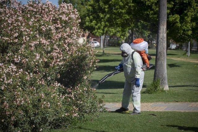 Archivo - Un operario inicia las labores de fumigación y el tratamiento en imbornales contra el mosquito para prevenir el Virus del Nilo, a 11 de mayo del 2021, en Coria del Río, Sevilla (Andalucía).