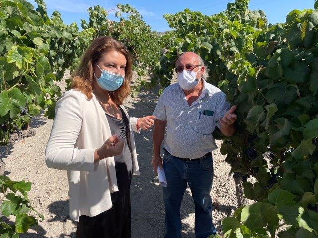 La consejera de Agricultura, Ganadería, Pesca y Desarrollo Sostenible de la Junta de Andalucía , Carmen Crespo, durante su visit al centro Ifapa 'Rancho de la Merced', en Jerez.