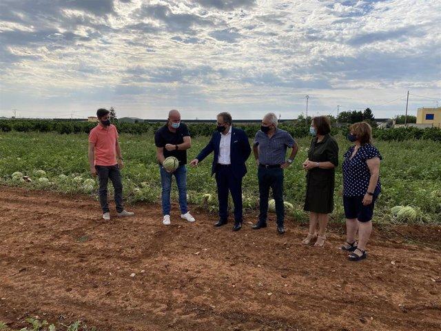 El presidente de la Diputación de Castellón, José Martó, visita Benicarló junto a la alcaldesa y diputada provincial, Xaro Miralles, para conocer in situ las consecuencias del pedrisco.