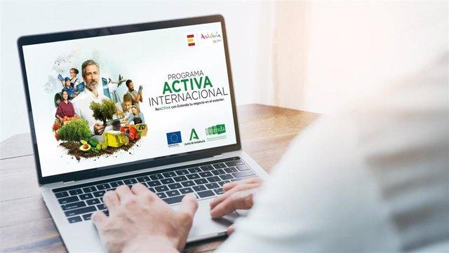 Las actividades han consistido en la promoción, información y consultoría de las empresas.