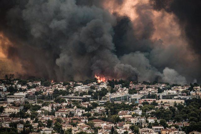 03 August 2021, Greece, Athens: Smoke rise from a wildfire that broke out in a forest area in Tatoi. Photo: Eurokinissi/Eurokinissi via ZUMA Press Wire/dpa