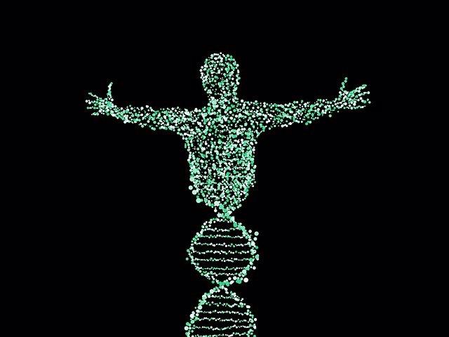 Archivo - ADN, genética, cromosomas