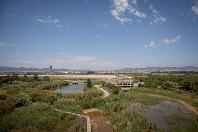 Archivo - Arxivo - L'aeroport de de Josep Tarradellas Barcelona-El Prat, prop de l'espai protegit natural de la Ricarda, a 9 de juny de 2021, al Prat de Llobregat, Barcelona, Catalunya (Espanya).