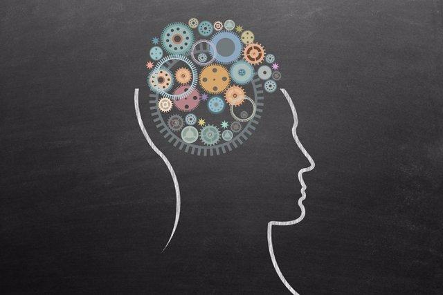 Archivo - Cerebro, prensar, tomar decisiones.