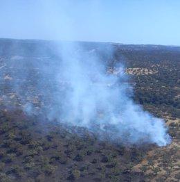 Incendio en la dehesa de San Francisco de Santa Olalla del Cala (Huelva).