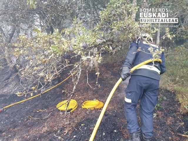Archivo - Un bombero trabaja en un incendio forestal en Álava
