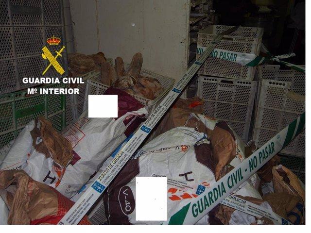 Kilos de pan inmovilizados por la Guardia Civil por no cumplir glas condiciones higiénico sanitarias en Cambre (A Coruña).
