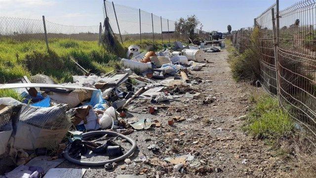 Archivo - Limpieza de escombros y voluminosos del camino de ses Argiles de s'Aranjassa.
