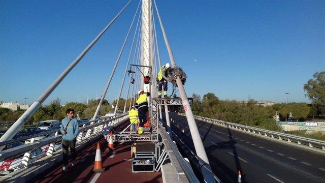 Imagen de actuaciones en el puente del Alamillo.