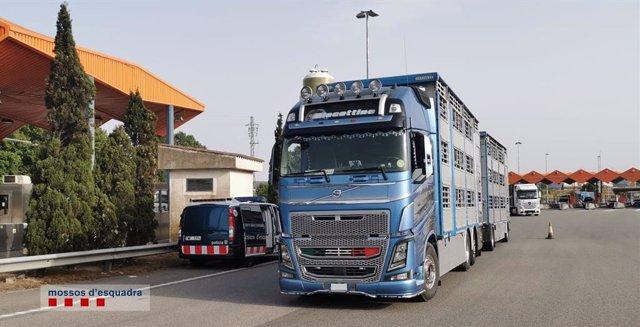 Els Mossos d'Esquadra van detenir aquest dimecres a La Jonquera (Girona) a un camioner que presumptament imputava les seves hores de conducció a una altra persona mitjançant l'ús d'una targeta que no era la seva.