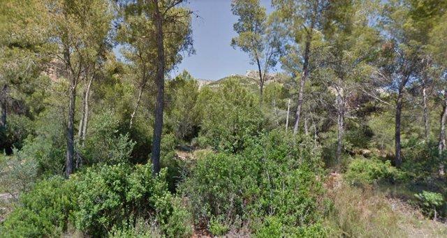 Archivo - Parque Natural del Montgó
