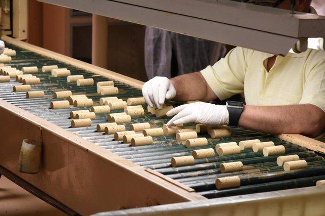 Archivo - Industria del corcho