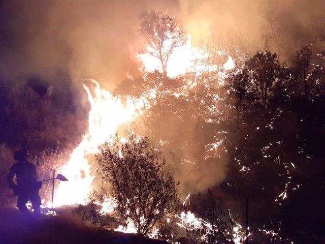 Imatge de l'incendi declarat en Villaharta (Còrdova), declarat estabilitzat per l'Infoca.