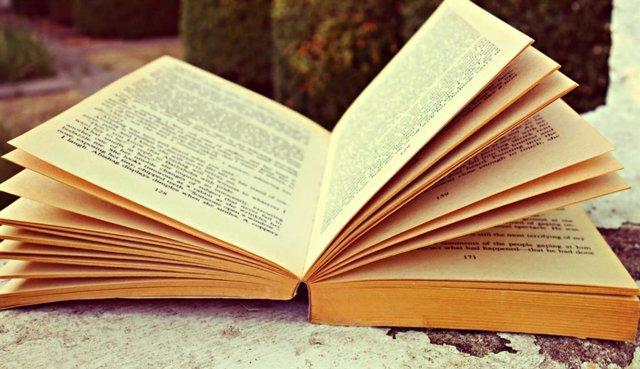 Archivo - Imagen de recurso de un libro