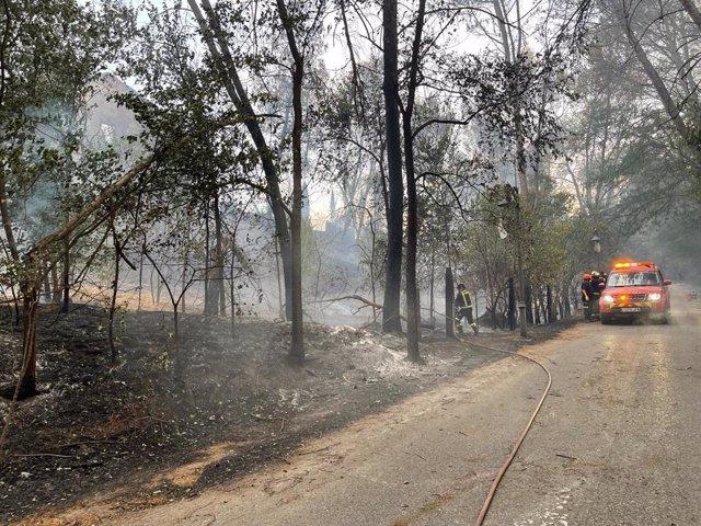 Incendio de Batres, estabilizado a las 21.30 horas de este domingo.