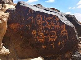 Analizan cómo la colonización biológica de las rocas afecta a la conservación de los petroglifos del desierto del Negev (Israel)