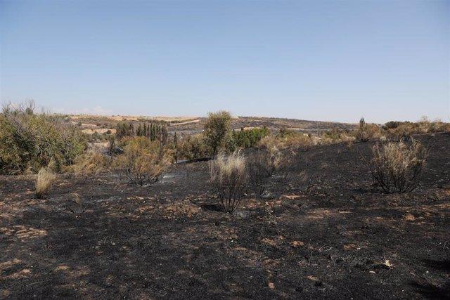 Una de las zonas dañadas por el incendio, a 19 de agosto de 2021, en Batres, Madrid, (España).