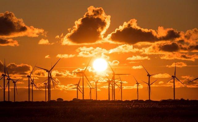 03 August 2021, Schleswig-Holstein, Bredstedt: The sun sets behind a wind farm with wind turbines at Bredstedter Koog. Photo: Daniel Bockwoldt/dpa