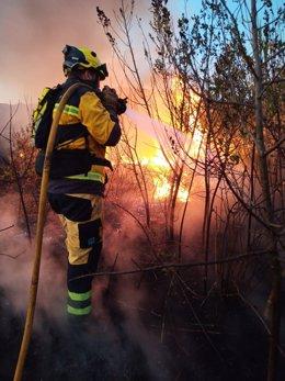 Un bombero del Ibanat actúa en el incendio forestal de Ses Jonqueres Veres, en Sa Pobla.