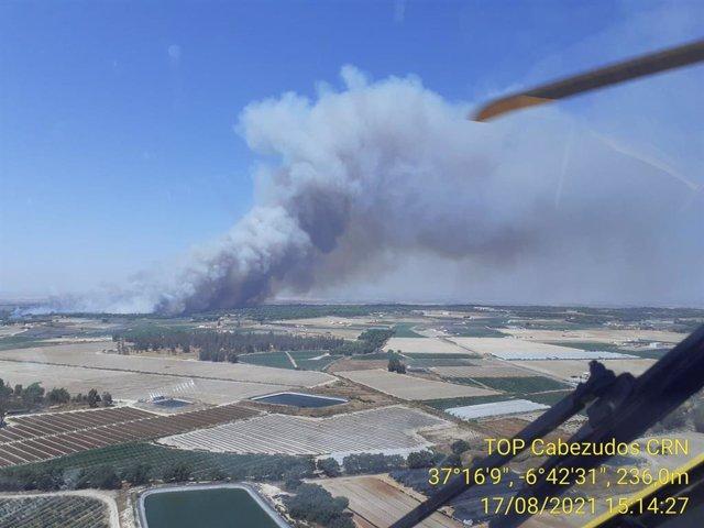 Imagen del incendio forestal declarado en Lucena del Puerto (Huelva).