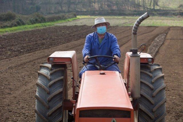 Archivo - Manuel Rodríguez ara sus fincas con el tractor y mascarilla para plantar patatas  en Lugo, Galicia (España), a 24 de marzo de 2021.