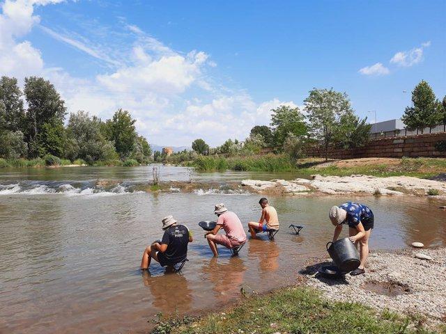 Diverses persones participen en el taller Recerca de l'Or en el riu Segre de Balaguer (Lleida).