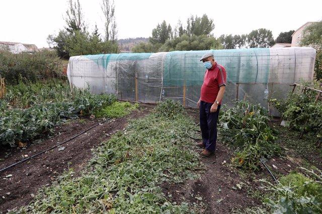 Una persona mira los desperfectos sufridos por las lluvias registradas, a 24 de agosto de 2021, en Guadalaviar, Teruel, Aragón, (España). Las últimas lluvias registradas la pasada tarde del lunes al sur de Teruel han provocado destrozos en los huertos de