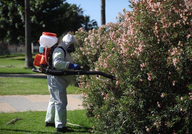 Archivo - Arxivo - Un operari realitza tasques de fumigació contra els mosquits.