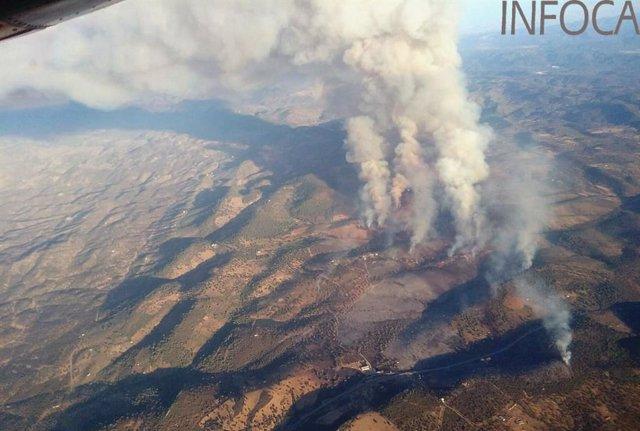 Incendio forestal de Alcaracejos