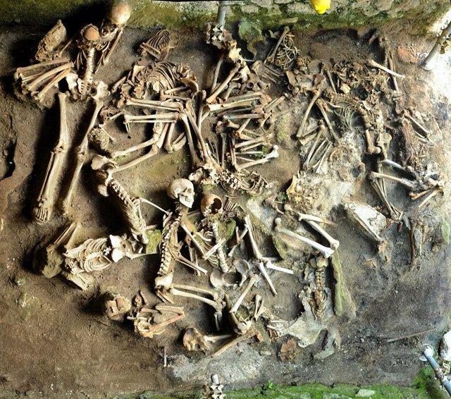 Archivo - Restos óseos examinados por los arqueólogos para el estudio