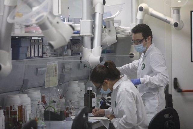 Archivo - Varios trabajadores en un laboratorio.