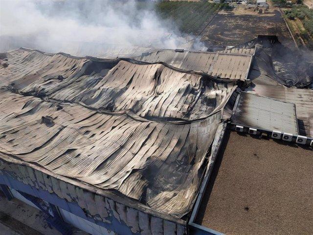 """Estado de la planta hortofrutícola """"El Escobar"""" cerca de Mérida tras el incendio"""