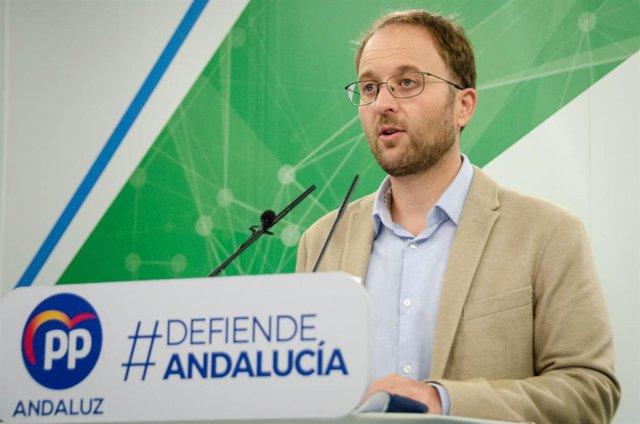 Archivo - Erik Domínguez, parlamentario del PP-A, en foto de archivo.