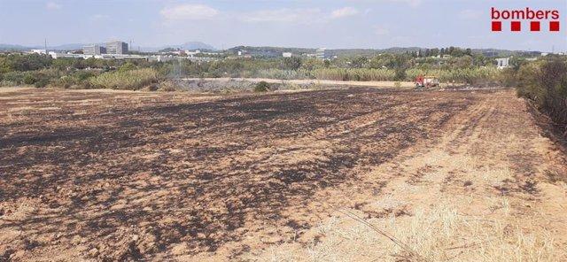 Incendi forestal a Sant Cugat (Barcelona) aquest dissabte