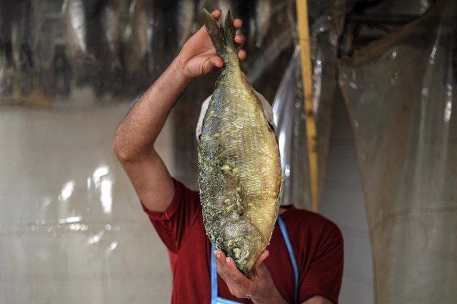 Archivo - Un palestino prepara el pescado para su venta en la Franja de Gaza.