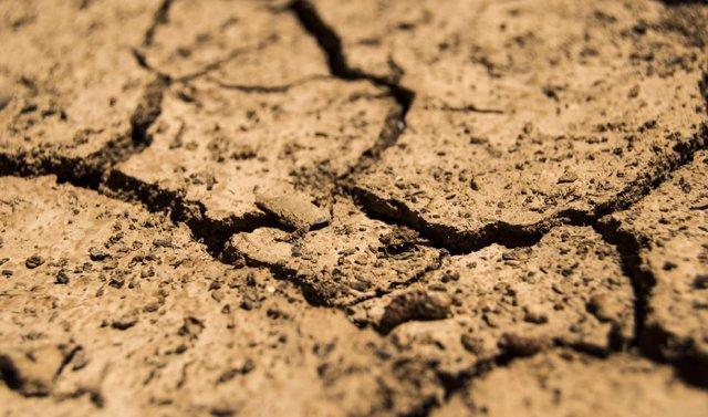 Archivo - Sequía (archivo)