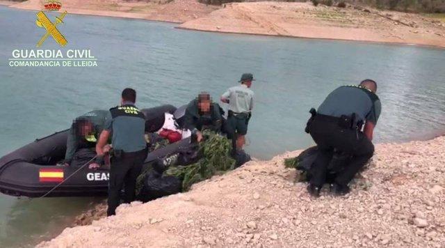 La Guàrdia Civil localitza marihuana en un barranc