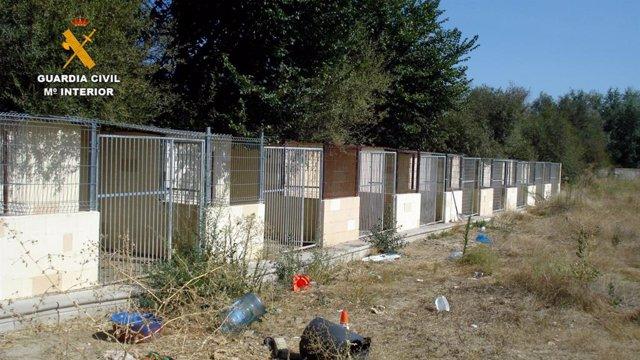 La Guardia Civil detiene a dos personas por la muerte y el maltrato de los perros en una residencia canina de Madrid.