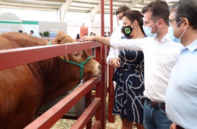 El Secretario General Del Psoecyl, Luis Tudanca, Visita La Feria Salamaq.