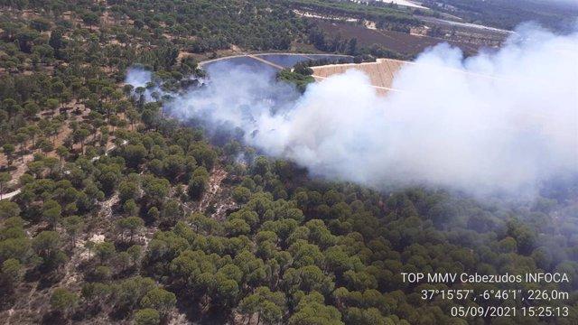 Incendio declarado en el paraje El Fresno de Moguer
