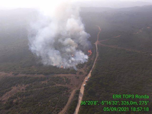 Incendio de San Roque (Cádiz)