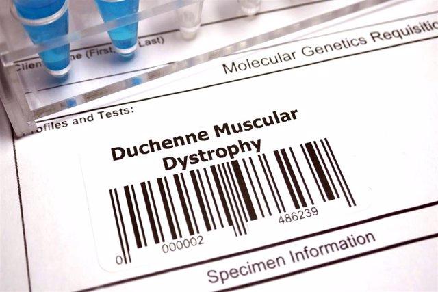 Archivo - Distrofia muscular de Duchenne.