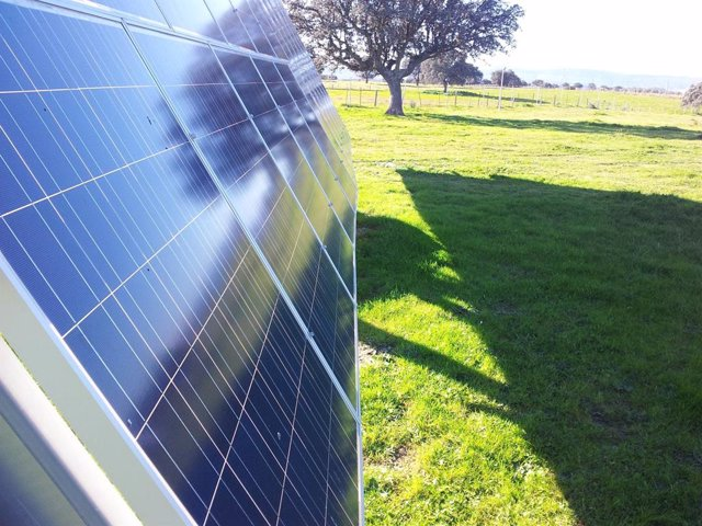 Archivo - Parque solar de OPDEnergy