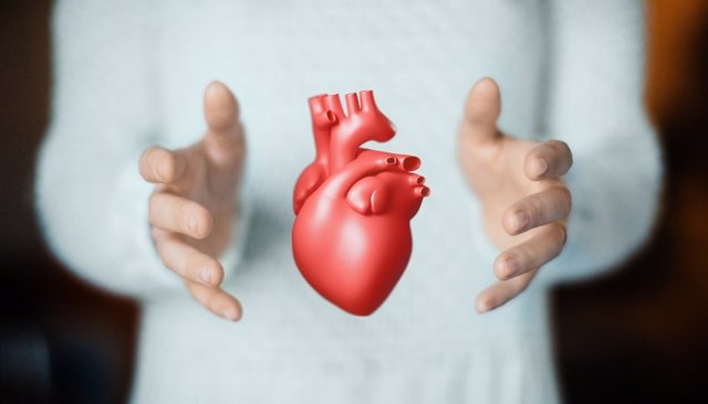Archivo - Hands with heart, health or love