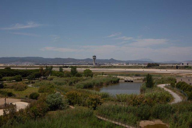 Archivo - Arxiu - L'Aeroport de Barcelona-el Prat, prop de l'espai protegit natural de la Ricarda