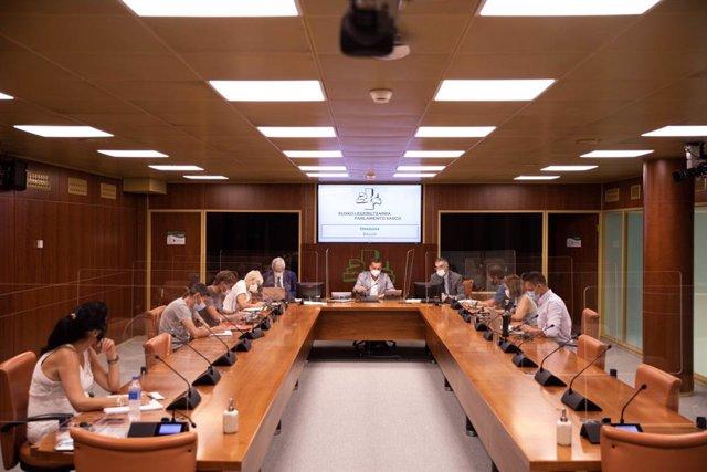 Comparecencia de Jonan Fernández ante la Comisión de Sallud
