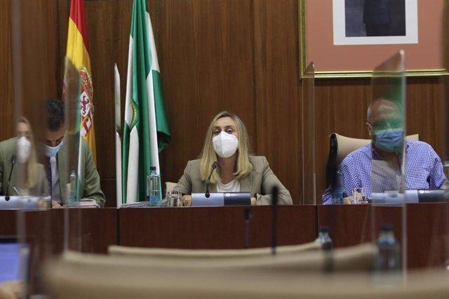La consejera de Fomento, Infraestructuras y Ordenación del Territorio, Marifrán Carazo, en comisión parlamentaria.