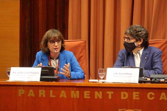 La presidenta de l'Acadèmia del Cinema Català, Judith Colell, en la comissió de control de la CCMA